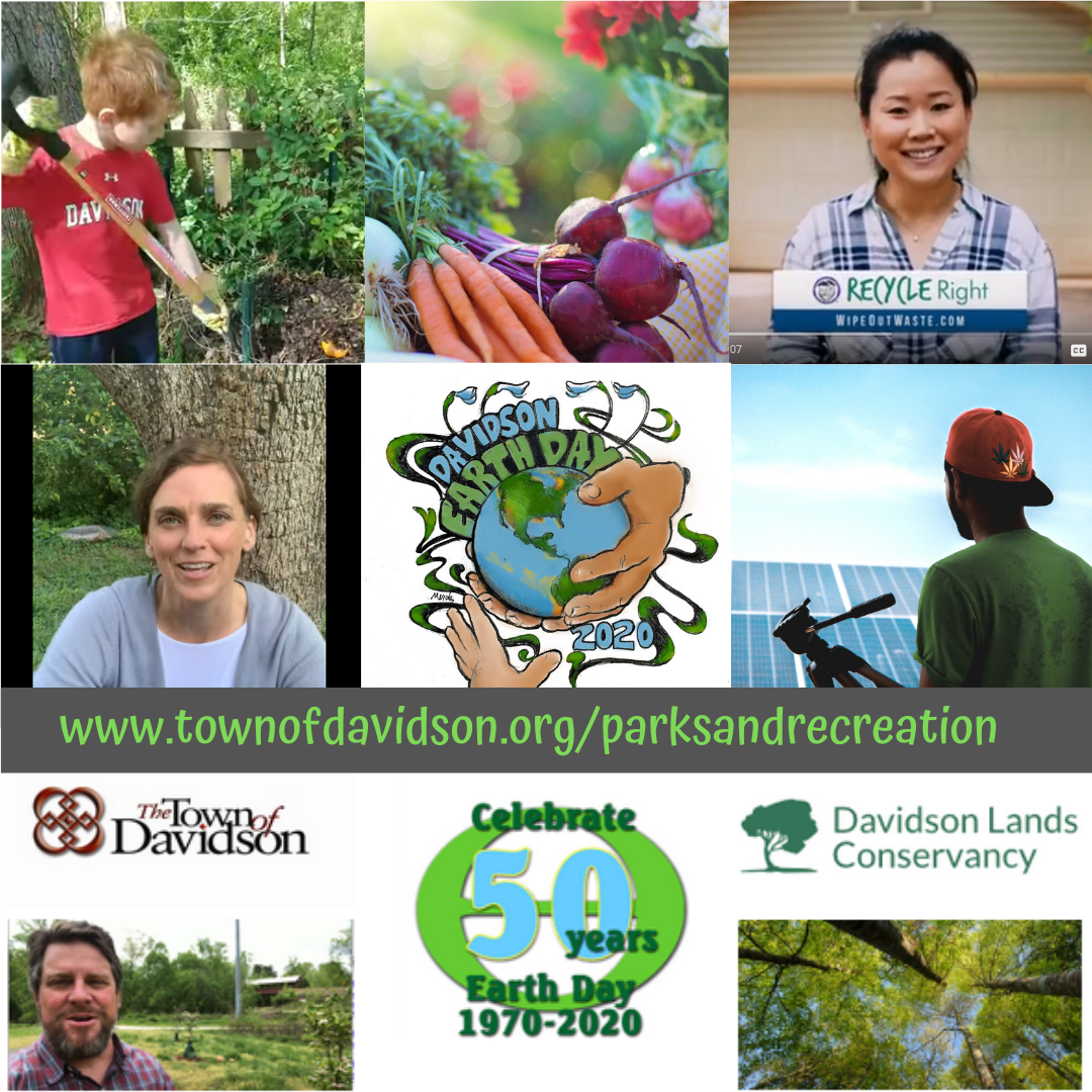 Virtual Davidson Earth Day