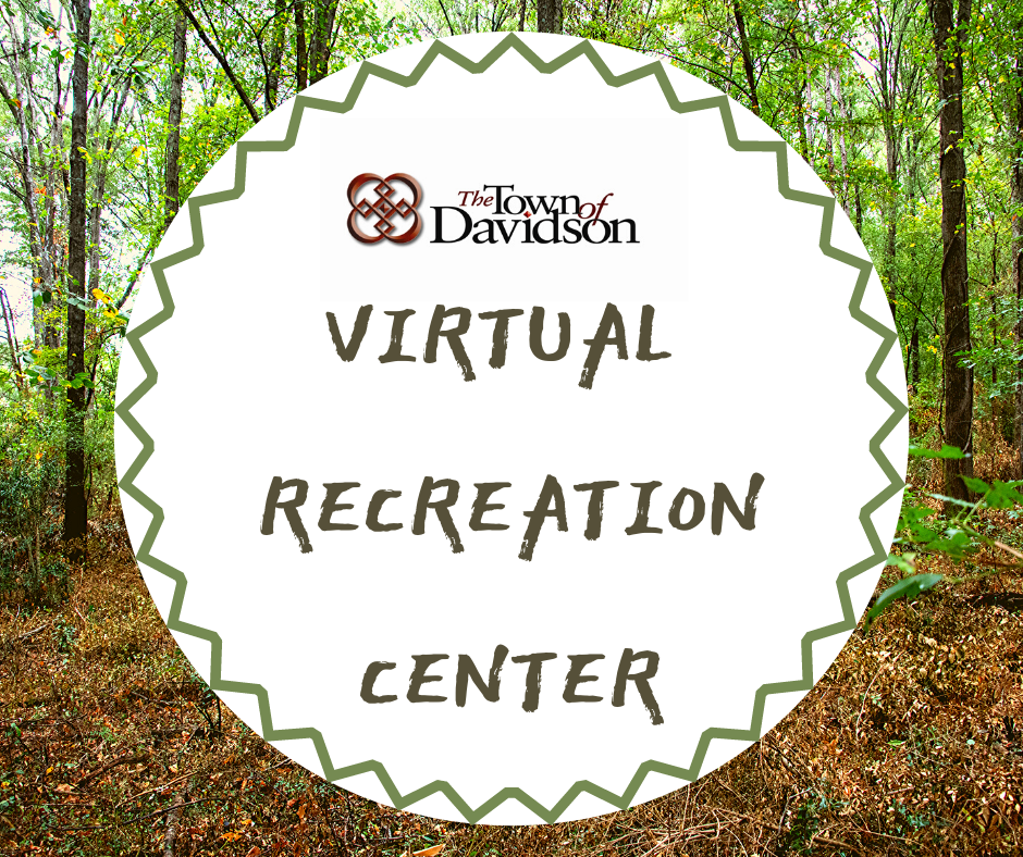 Virtual Parks and Recreation